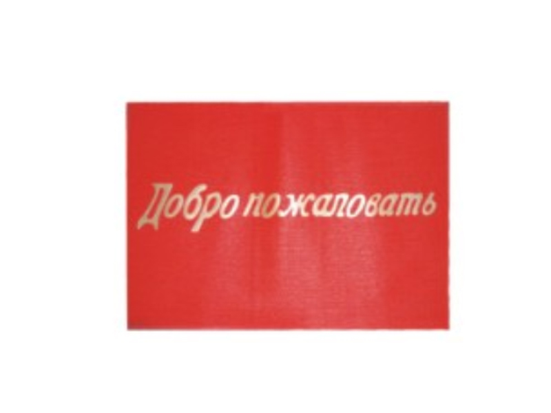Anti-Slip Loop Plastic Door Floor PVC Welcome Mat